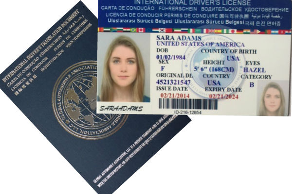 Drivers License Permit Driver's International